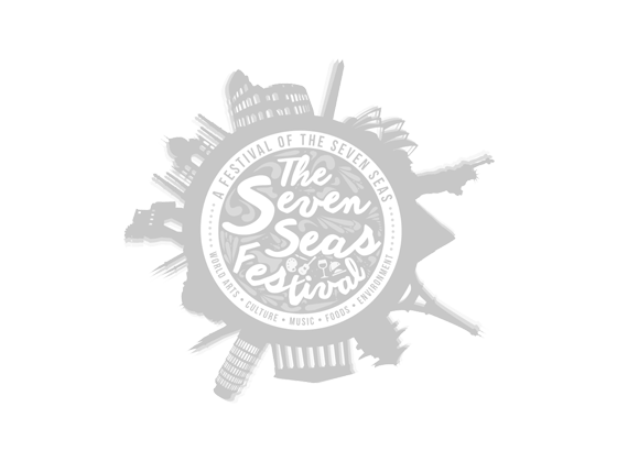the severn seas festival